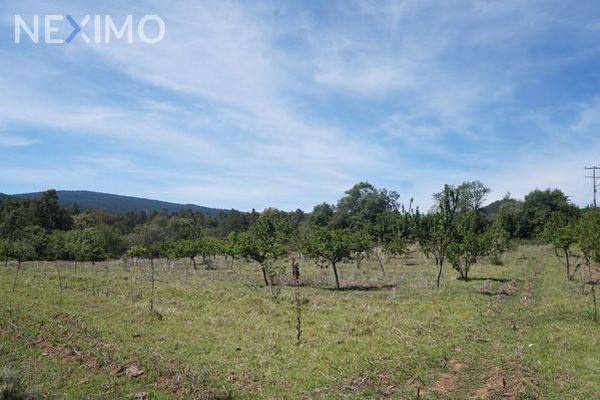 Foto de terreno industrial en venta en agua escondida 87, calapa, chignahuapan, puebla, 5891448 No. 07