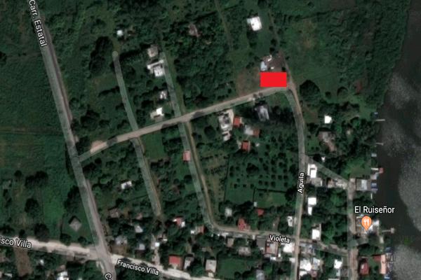 Foto de terreno habitacional en venta en aguila , la rivera, tampico alto, veracruz de ignacio de la llave, 8868121 No. 02