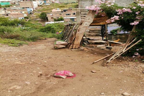 Foto de terreno habitacional en venta en  , águilas, guanajuato, guanajuato, 20254286 No. 03