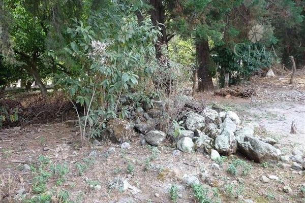 Foto de terreno habitacional en venta en  , ahuatenco, ocuilan, méxico, 5693622 No. 05