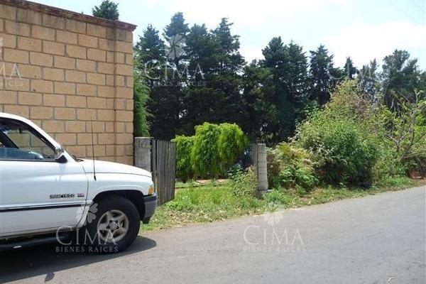 Foto de terreno habitacional en venta en  , ahuatenco, ocuilan, méxico, 5693622 No. 07