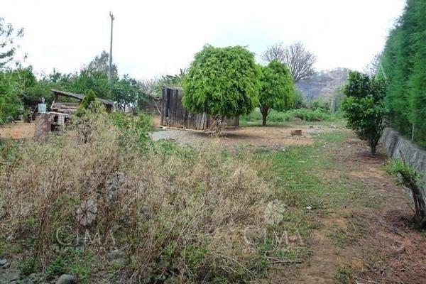 Foto de terreno habitacional en venta en  , ahuatenco, ocuilan, méxico, 8887526 No. 02