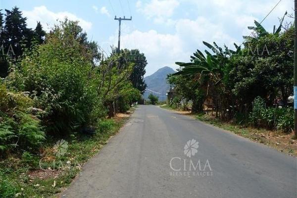 Foto de terreno habitacional en venta en  , ahuatenco, ocuilan, méxico, 8887526 No. 06