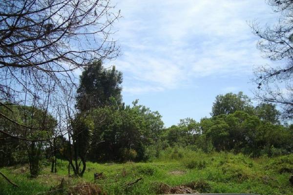 Foto de terreno habitacional en venta en ahuatepec 9, ahuatepec, cuernavaca, morelos, 5896657 No. 03