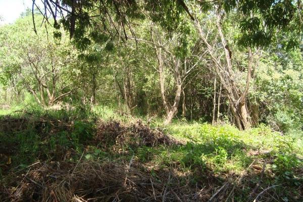 Foto de terreno habitacional en venta en ahuatepec 9, ahuatepec, cuernavaca, morelos, 5896657 No. 14