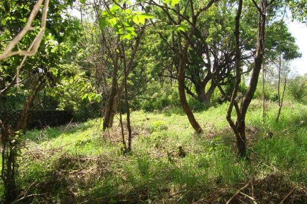 Foto de terreno habitacional en venta en ahuatepec 9, ahuatepec, cuernavaca, morelos, 5896657 No. 20