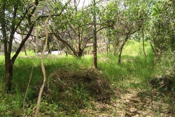 Foto de terreno habitacional en venta en ahuatepec 9, ahuatepec, cuernavaca, morelos, 5896657 No. 21