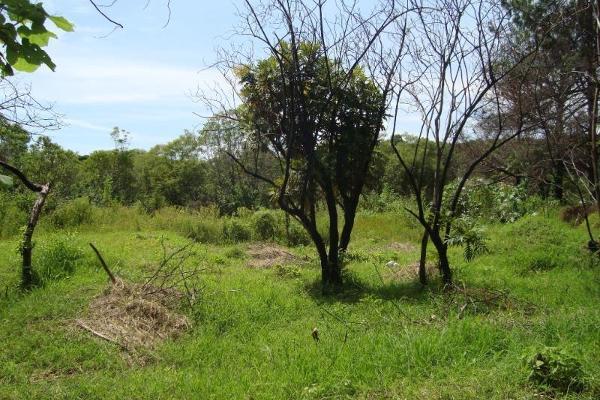 Foto de terreno habitacional en venta en ahuatepec 9, ahuatepec, cuernavaca, morelos, 5896657 No. 23