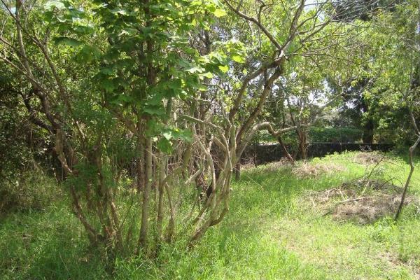Foto de terreno habitacional en venta en ahuatepec 9, ahuatepec, cuernavaca, morelos, 5896657 No. 26