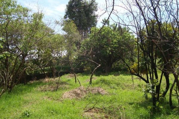 Foto de terreno habitacional en venta en ahuatepec 9, ahuatepec, cuernavaca, morelos, 5896657 No. 27