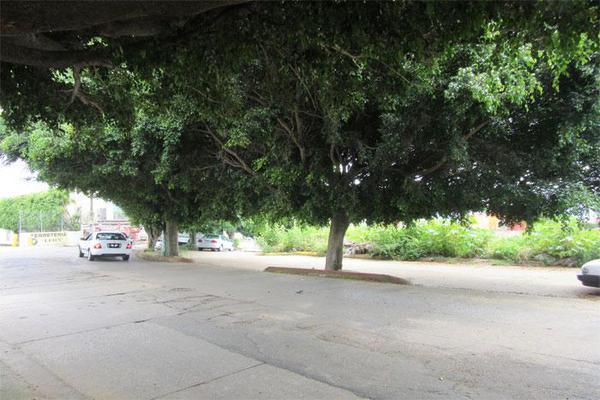 Foto de terreno habitacional en venta en  , ahuatlán tzompantle, cuernavaca, morelos, 21001859 No. 04