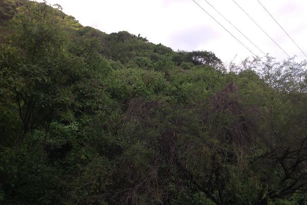 Foto de terreno habitacional en venta en  , ajijic centro, chapala, jalisco, 1141541 No. 07