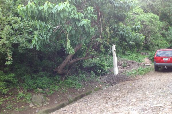 Foto de terreno habitacional en venta en  , ajijic centro, chapala, jalisco, 1141541 No. 10