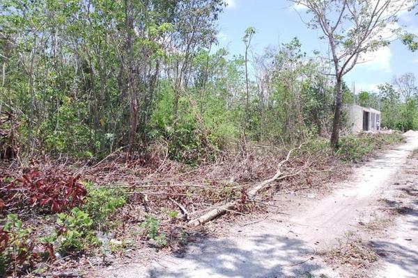 Foto de terreno habitacional en venta en alamos 12, álamos i, benito juárez, quintana roo, 0 No. 04