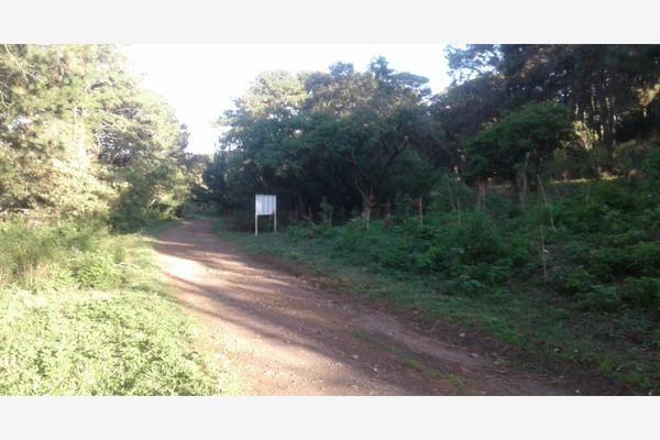 Foto de terreno habitacional en venta en alarcon 100, ahuatepec, cuernavaca, morelos, 7470636 No. 04