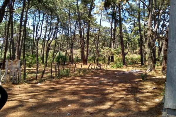 Foto de terreno habitacional en venta en alarcon 100, ahuatepec, cuernavaca, morelos, 7470636 No. 06