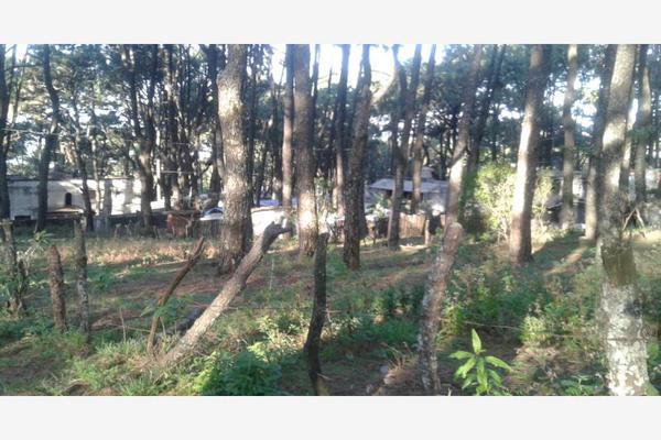 Foto de terreno habitacional en venta en alarcon 100, ahuatepec, cuernavaca, morelos, 7470636 No. 07