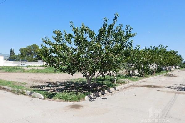 Foto de terreno habitacional en venta en  , aldama centro, aldama, chihuahua, 5694451 No. 06