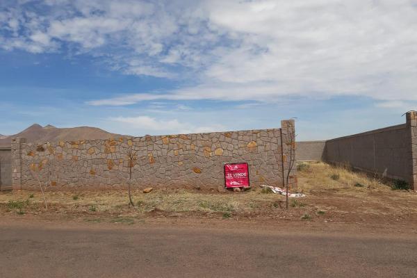 Foto de terreno habitacional en venta en  , aldama centro, aldama, chihuahua, 8098148 No. 04