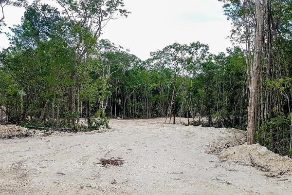 Foto de terreno habitacional en venta en aldea premium zama , tulum centro, tulum, quintana roo, 3735614 No. 06