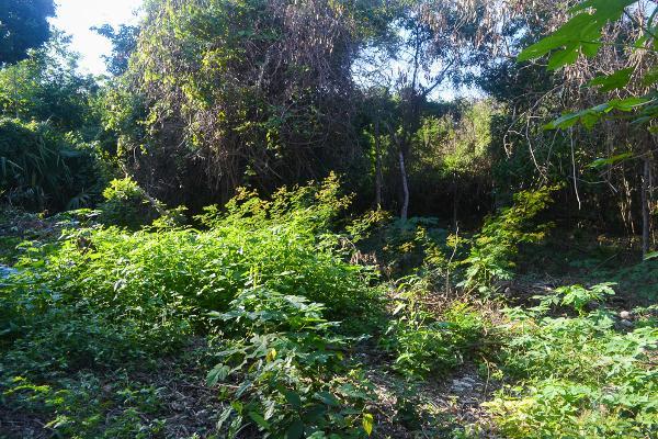 Foto de terreno comercial en venta en aldea zama premium , tulum centro, tulum, quintana roo, 4670850 No. 10