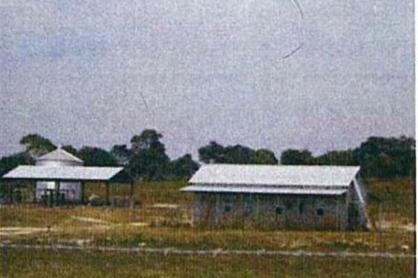 Foto de terreno habitacional en venta en  , alejandría, candelaria, campeche, 4669102 No. 02