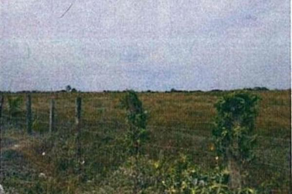 Foto de terreno habitacional en venta en  , alejandría, candelaria, campeche, 4669102 No. 06