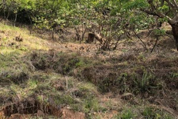 Foto de terreno habitacional en venta en alfredo checa lote 47, manzana e taxco , lomas de taxco, taxco de alarcón, guerrero, 6187119 No. 08