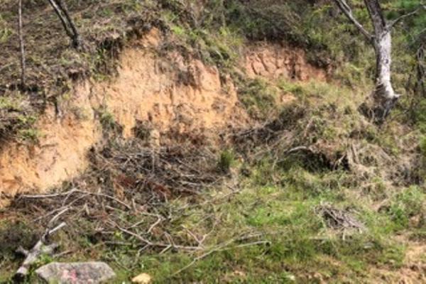 Foto de terreno habitacional en venta en alfredo checa lote 47, manzana e taxco , lomas de taxco, taxco de alarcón, guerrero, 6187119 No. 10