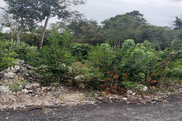 Foto de terreno habitacional en venta en alfredo v bonfil , alfredo v bonfil, benito juárez, quintana roo, 9261347 No. 01