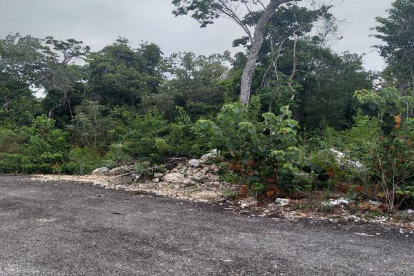Foto de terreno habitacional en venta en alfredo v bonfil , alfredo v bonfil, benito juárez, quintana roo, 9261347 No. 05