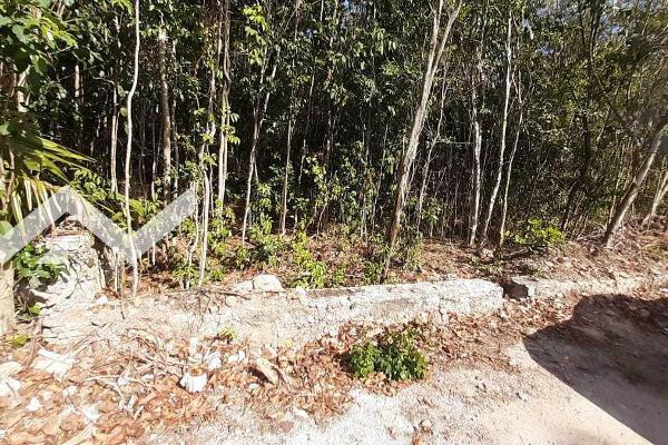 Foto de terreno habitacional en venta en  , alfredo v bonfil, benito juárez, quintana roo, 0 No. 04