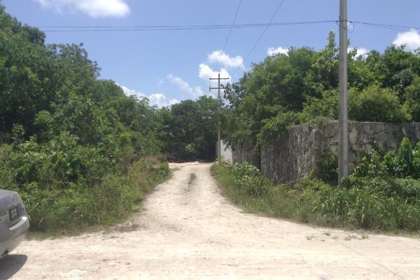 Foto de terreno habitacional en venta en  , alfredo v bonfil, benito juárez, quintana roo, 2627517 No. 07