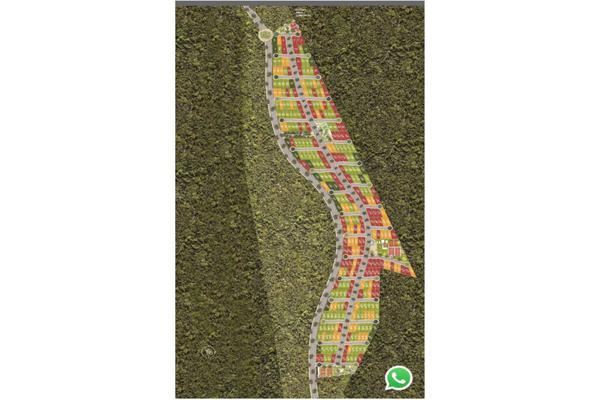 Foto de terreno habitacional en venta en  , algarrobos desarrollo residencial, mérida, yucatán, 10032461 No. 16