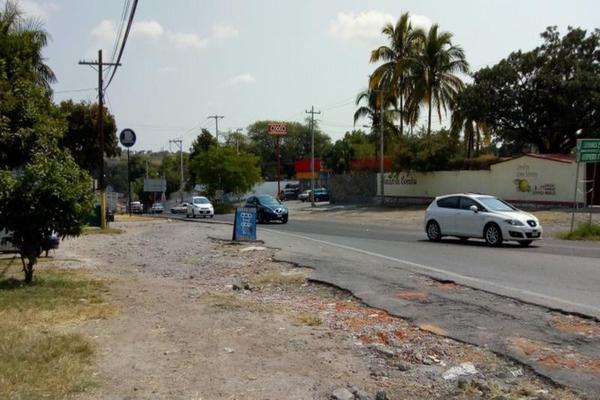 Foto de terreno habitacional en venta en  , alpuyeca, xochitepec, morelos, 7962318 No. 04