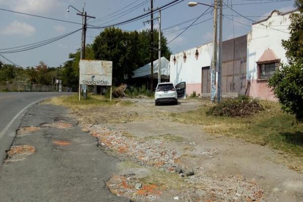 Foto de terreno habitacional en venta en  , alpuyeca, xochitepec, morelos, 7962318 No. 05