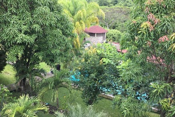 Foto de casa en venta en  , alpuyeca, xochitepec, morelos, 7962675 No. 23