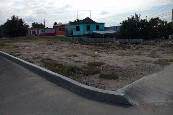 Foto de terreno habitacional en renta en  , altamira, altamira, tamaulipas, 11700748 No. 01