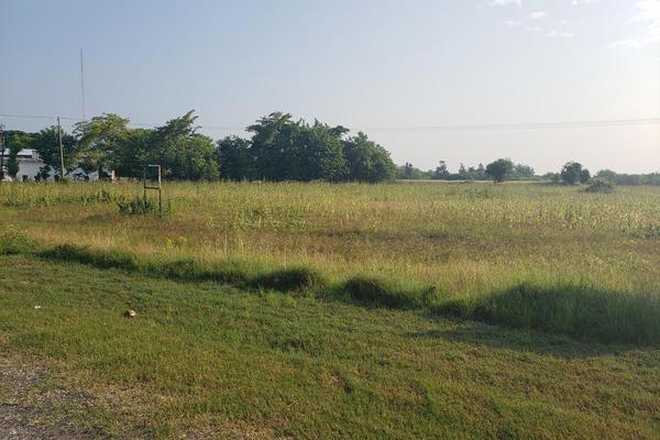Foto de terreno habitacional en renta en  , altamira, altamira, tamaulipas, 16254442 No. 05