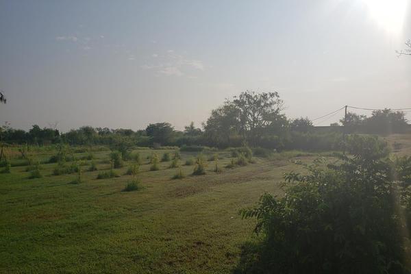 Foto de terreno habitacional en renta en  , altamira, altamira, tamaulipas, 16254442 No. 06