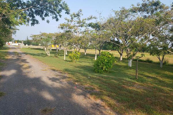 Foto de terreno habitacional en renta en  , altamira, altamira, tamaulipas, 16254442 No. 07