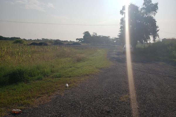 Foto de terreno habitacional en renta en  , altamira, altamira, tamaulipas, 16254442 No. 08