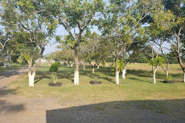 Foto de terreno habitacional en renta en  , altamira, altamira, tamaulipas, 16254442 No. 11