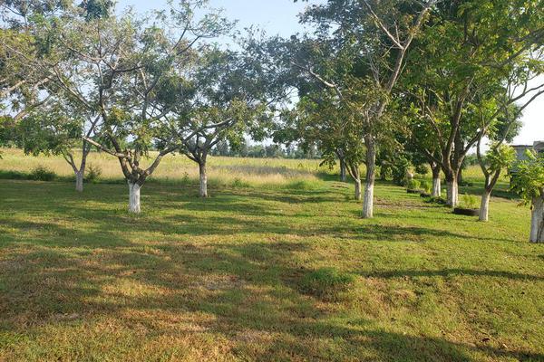 Foto de terreno habitacional en renta en  , altamira, altamira, tamaulipas, 16254442 No. 12