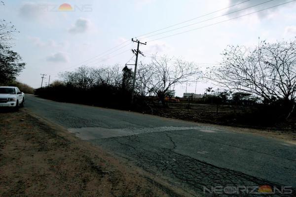 Foto de terreno habitacional en renta en  , altamira, altamira, tamaulipas, 19291397 No. 03