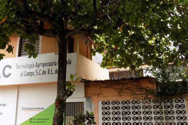 Foto de casa en venta en altamirano sn , zapotal, acayucan, veracruz de ignacio de la llave, 3183230 No. 04