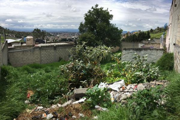 Foto de terreno habitacional en venta en altavista , san luis obispo, toluca, méxico, 0 No. 04