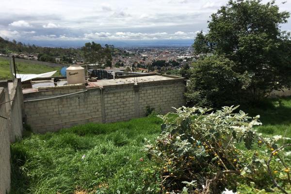 Foto de terreno habitacional en venta en altavista , san luis obispo, toluca, méxico, 0 No. 06