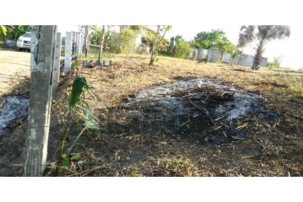 Foto de terreno habitacional en venta en  , alto lucero, tuxpan, veracruz de ignacio de la llave, 9107526 No. 09