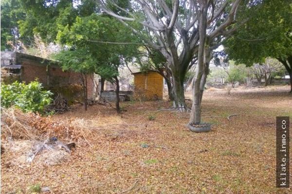 Foto de terreno habitacional en venta en  , álvaro obregón, miacatlán, morelos, 4641377 No. 02